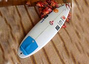 The Champions Surfboards